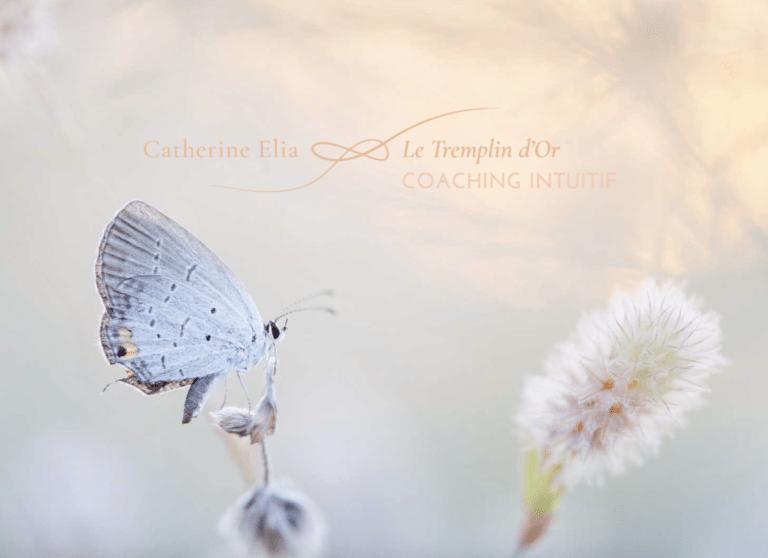 branding-coach-intuitif-therapeute